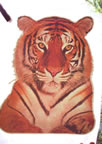 tiger vintage t-shirt iron-on