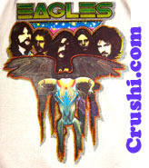 the eagles band vintage t-shirt iron-on