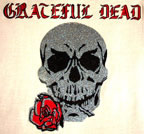 grateful dead skull vintage 1970's t-shirt iron-on