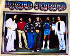 lynyrd skynyrd street survivors vintage t-shirt iron-on