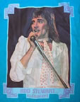 rod stewart concert vintage 1970's t-shirt iron-on