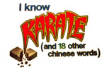 i know karate... yeah right! vintage t-shirt iron-on